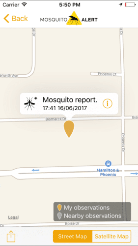 Mosquito alert 3